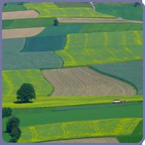 Agricultura